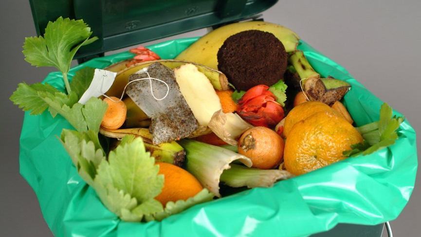 Bayraktar: Sebze ve meyvenin yüzde 46'sı sofraya ulaşmıyor