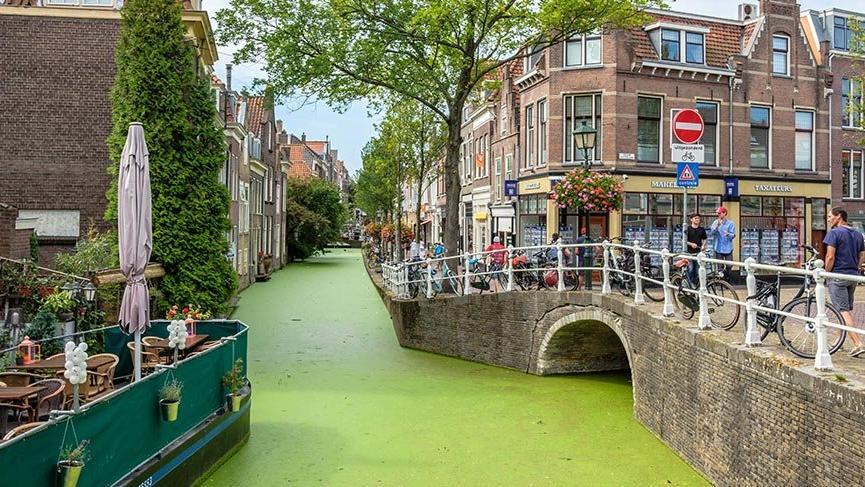 Hollanda'nın keşfedilmeyi bekleyen şehirleri