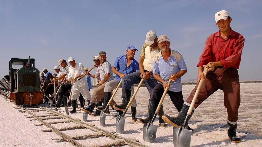 3 bin lira ücretle tuz toplama işi için başvurular başladı