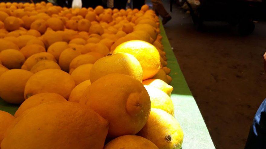 Limon bahçede 1, tezgahta 10 TL