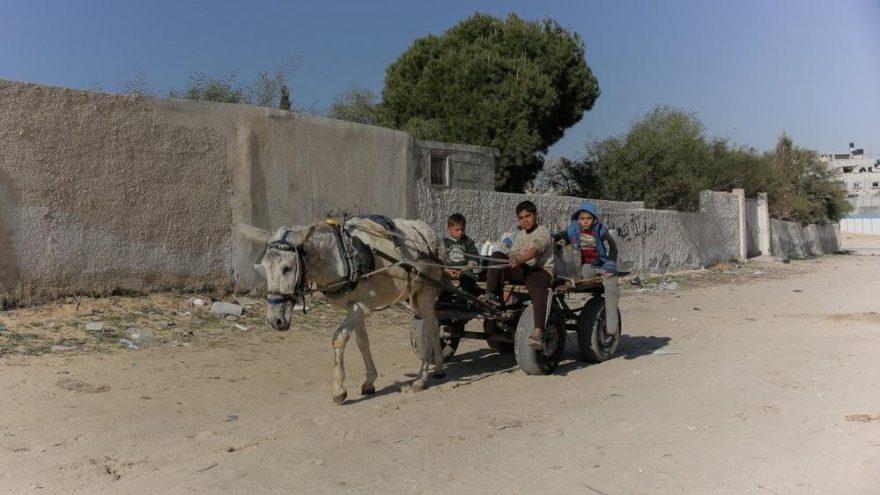 Gazze'deki terapötik süt eksikliği çocukların sağlığını tehdit ediyor