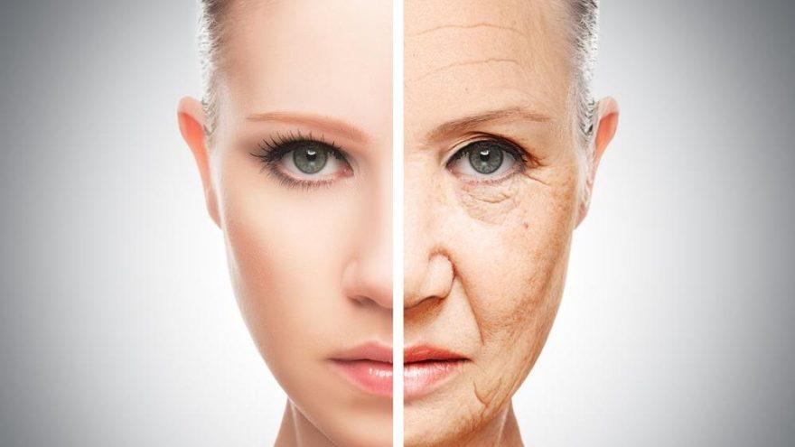 Yaşlanmayı durdurmanın formülü bulundu mu?