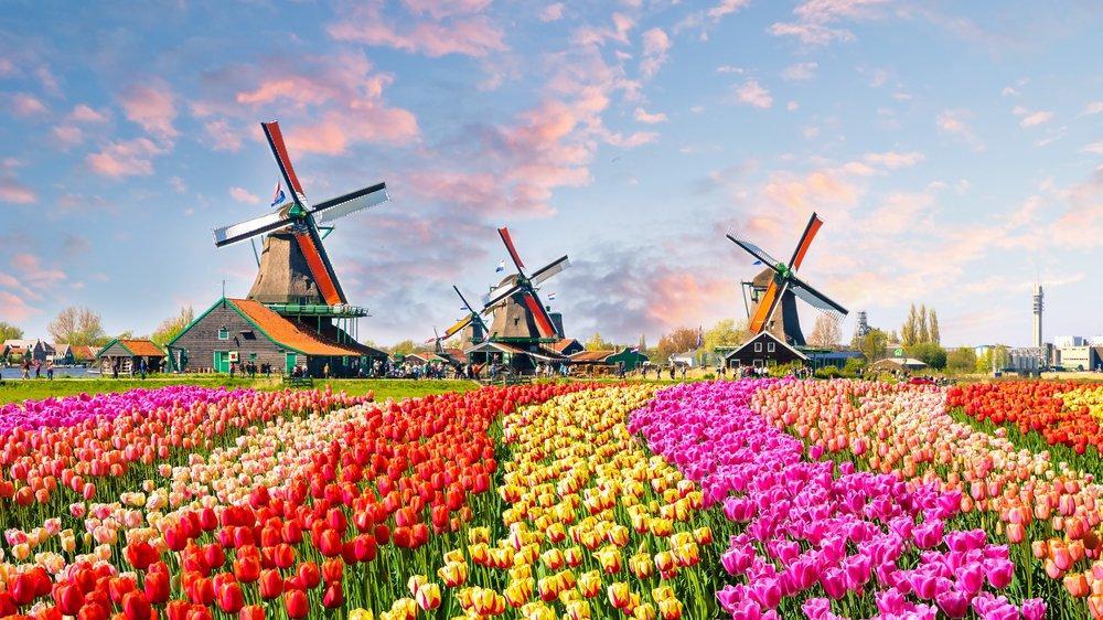 Hollanda gezilecek yerler: Dünyaca ünlü su kanalları ve müzeleri ile Hollanda gezi rehberi...