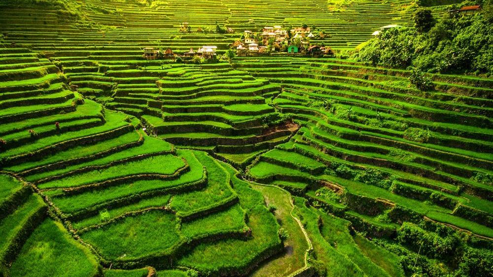 Filipinler gezilecek yerler: Pirinç terasları, yeraltı nehirleri ile büyüleyici ülke Filipinler'in gezi rehberi...