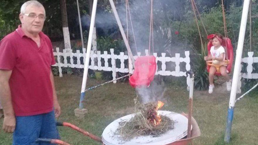 Kocaeli'nde sivrisinek istilası