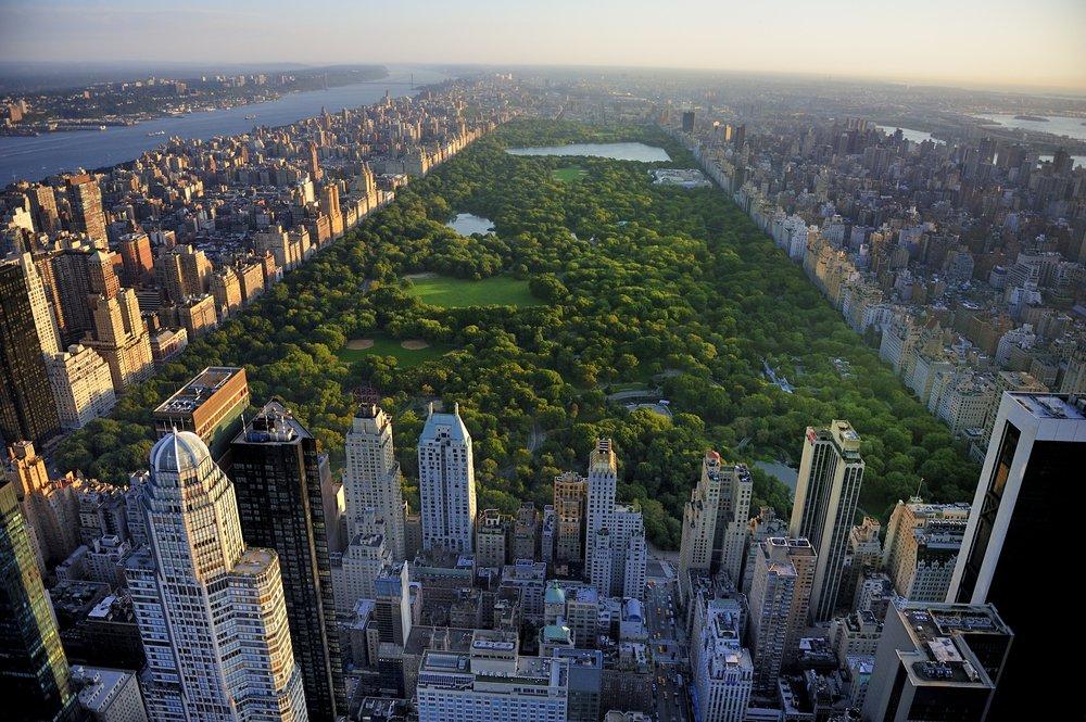 Central Park - Foto: Shutterstock