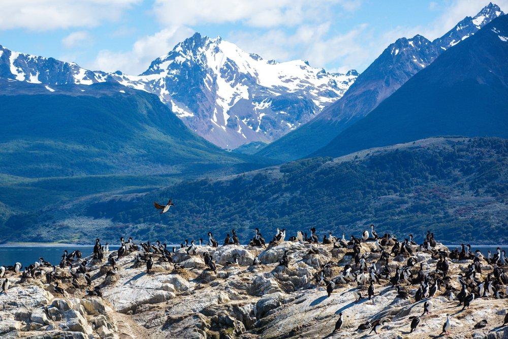 Ushuaia - Foto: Shutterstock