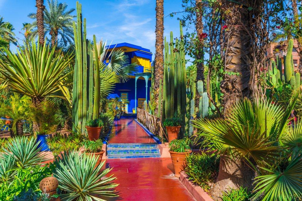 Majorelle Bahçeleri Foto: Shutterstock