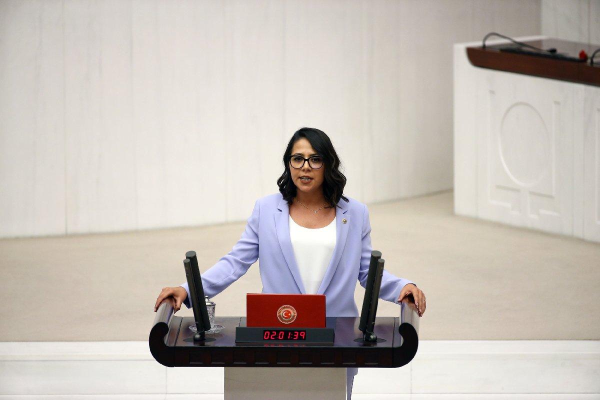 CHP İstanbul Milletvekili Sera Kadıgil