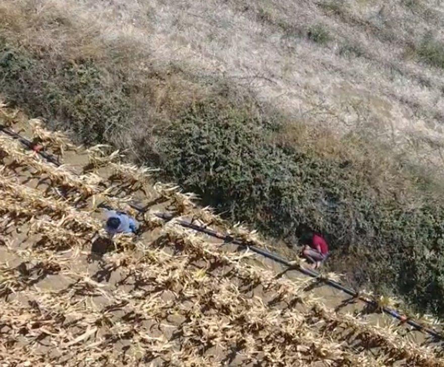 Firari şahıs drone ile yapılan tarama sonucu yakalandı. DHA
