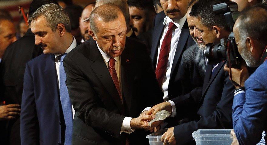 erdogan-aa