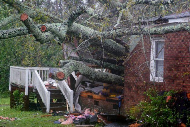 Bir anne ve bebeği ağacın devrilmesi sonucu evlerinde can verdi.