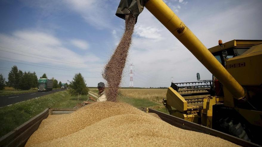 1 kilo buğday satıyor 1 fincan kahve içemiyor