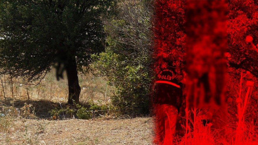 Aydın'da ağaca asılı erkek cesedi bulundu