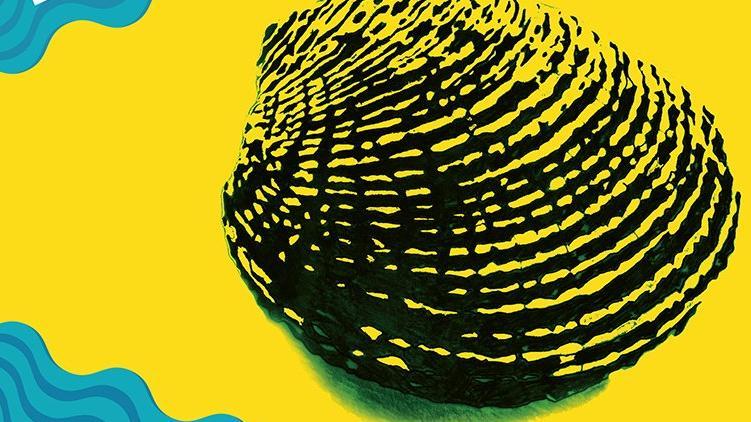 Başka Sinema 5. yılını Ayvalık Film Festivali ile kutluyor