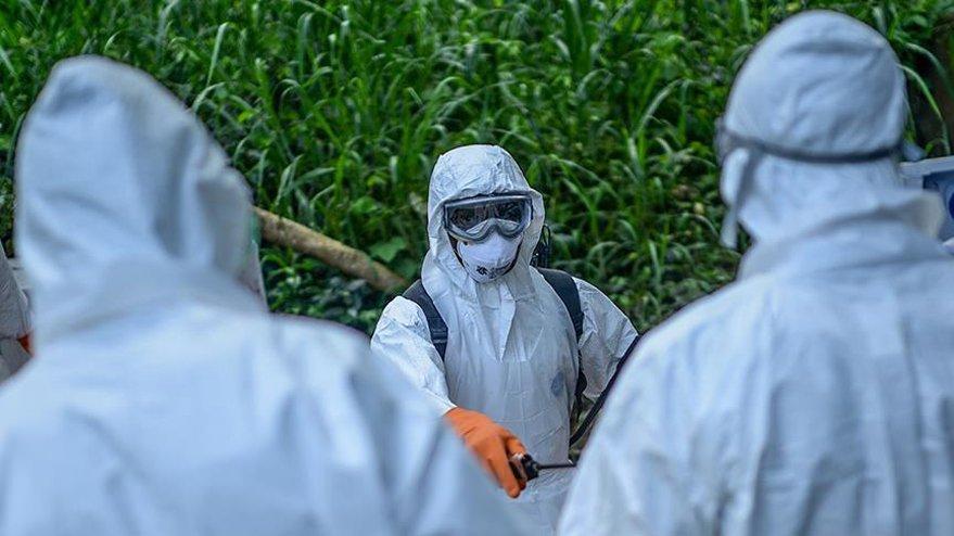 Ebola salgınından ölenlerin sayısı artıyor