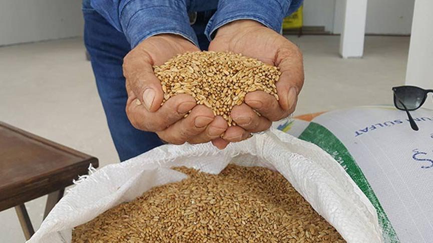 TMO'dan buğday arzına yönelik açıklama!