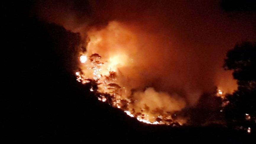 Muğla'da korkutan orman yangını