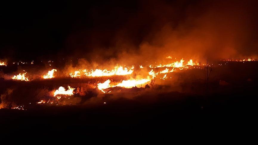 Orman yangını paniğe neden oldu