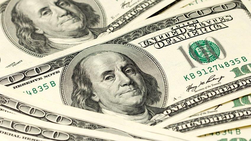 Hükümetten dolar tahmini