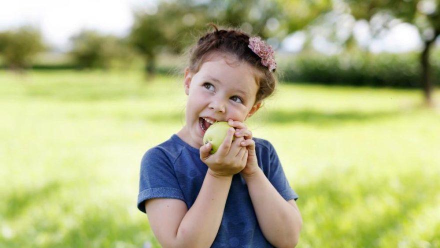 Sağlıklı beslenme su tüketimini yüzde 55'e kadar azaltabiliyor