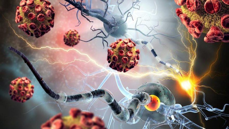 Beyin kanserinde hücrelerin sonsuz bölünmesinin önüne geçildi