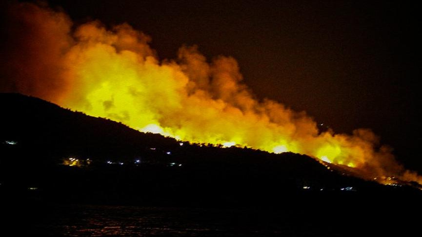 Sisam Adası'nda yangın