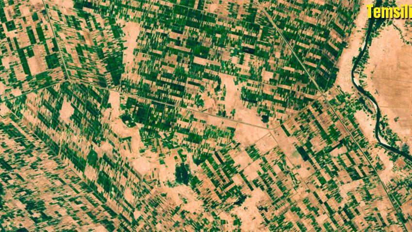 Türkiye Sudan'da devasa bir alanda tarım yapacak