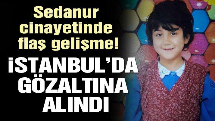 Son dakika: Sedanur cinayetinde yeni gelişme! İstanbul'da bir gözaltı