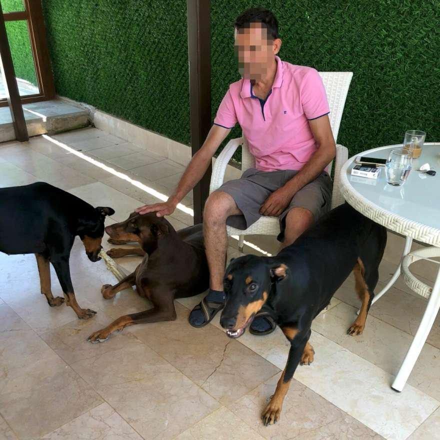 Hakkında evden uzaklaştırma kararı alınan M.U. köpeklerini görebilmek için hukuk mücadelesi başlattı. Foto: DHA