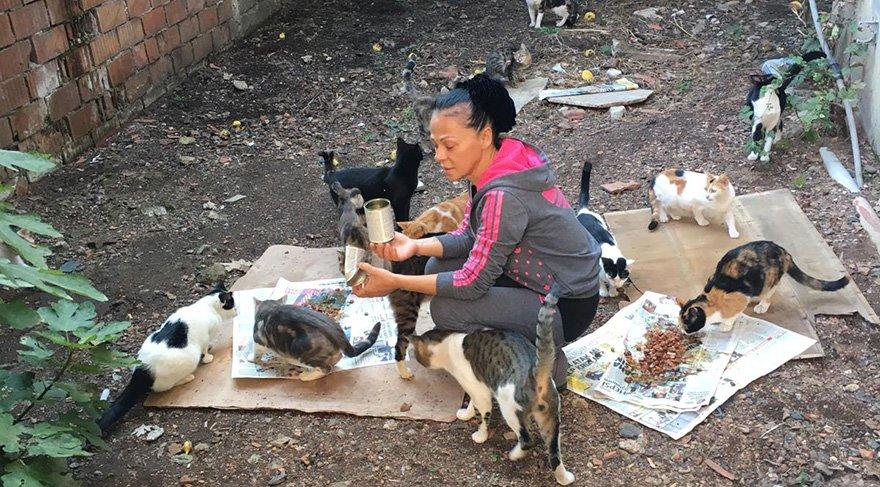 Taşvur geride bıraktığı kedilere polis nezaretinde yiyecek ve içecek götürebiliyor. Foto: DHA