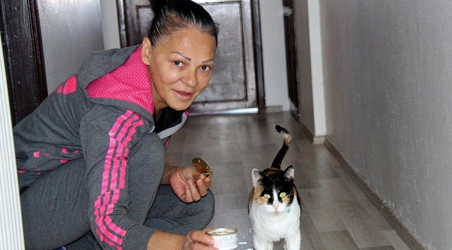 çalıştığı evde kedi beslediği için evden atıldı. Foto: DHA