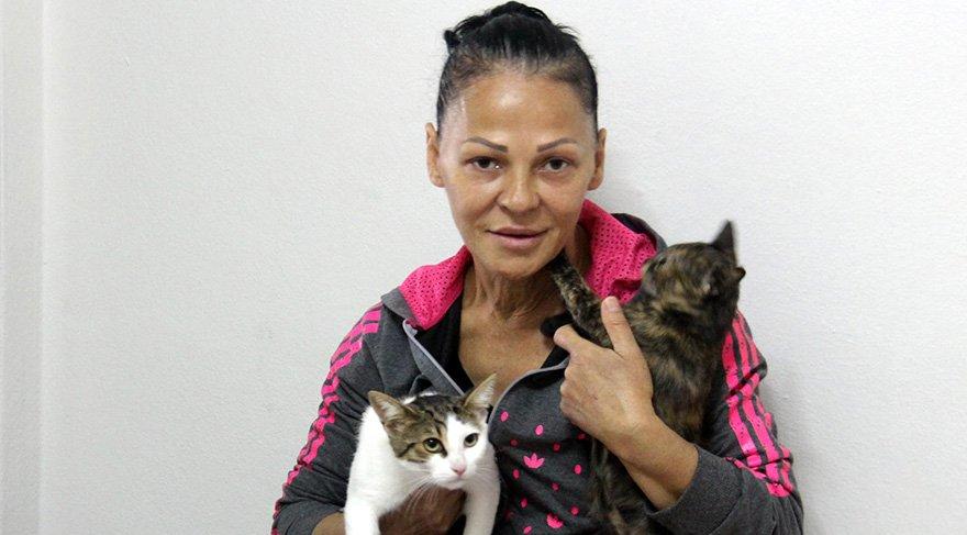 Kedi beslediği ve çalıştığı bahçeli evden atılan Mürvet Taşvur, kiraladığı apartman dairesi sadece 7 kedi götürebildi. Foto: DHA