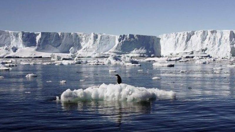 Buzullarda sıra dışı keşif… Bu sesi ilk kez duyacaksınız