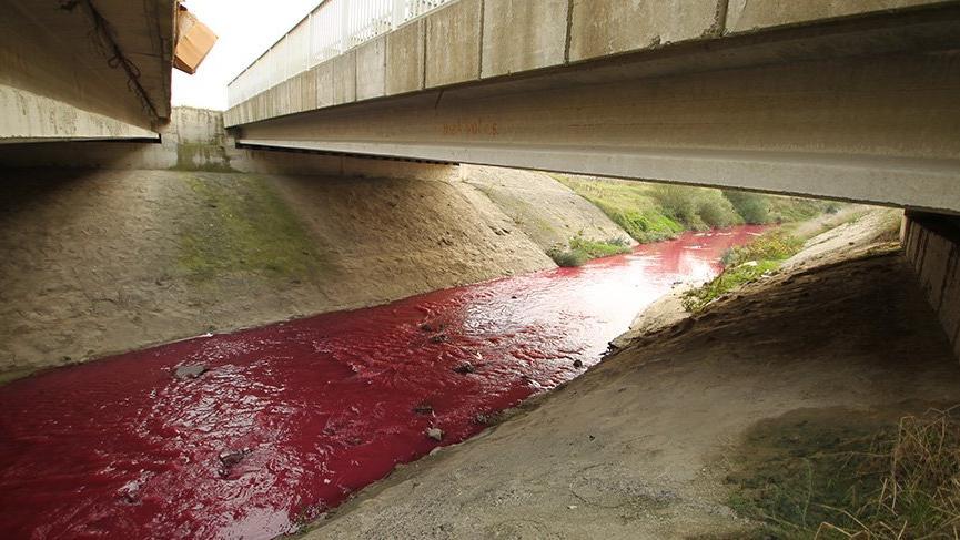 Kimyasal atık nedeniyle dere kırmızı ve pembe akıyor