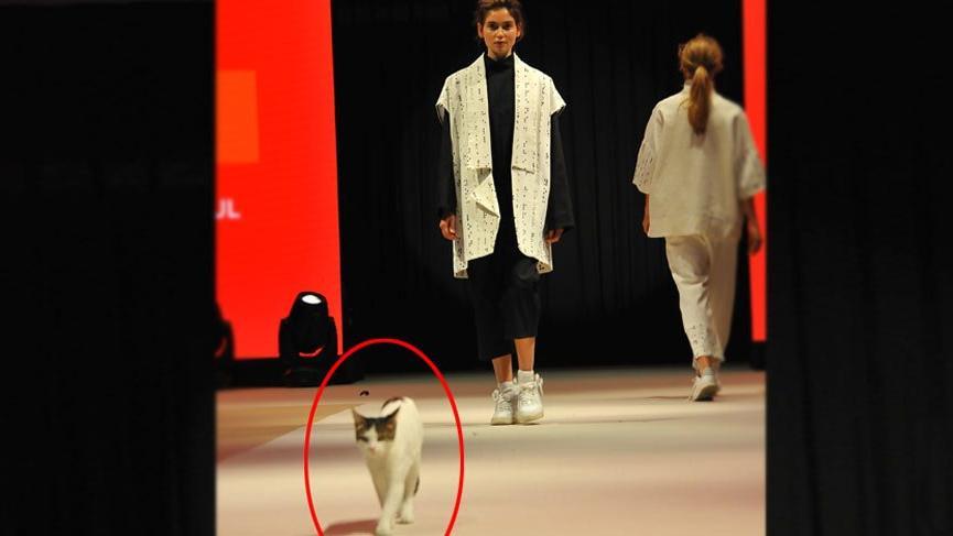 Vakko Esmod Moda Akademisi 11 ülkeden moda profesyonellerini Türkiye'de ağırladı