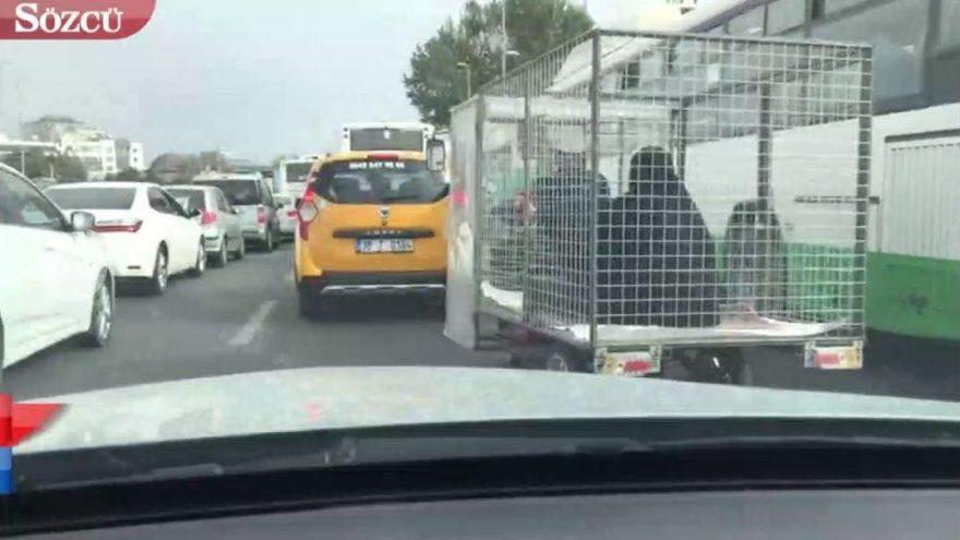 Kayseri'de görenleri şaşkına çeviren görüntü!