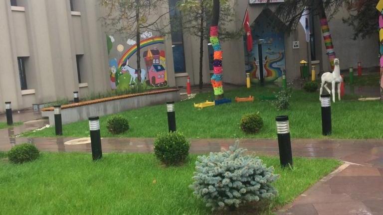 Devlet kreşinde skandal 'sirk hayvanı' benzetmesi