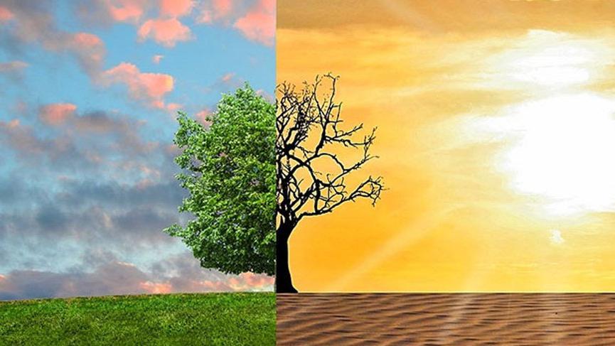 İklim değişikliği ile mücadele için iyi haber!