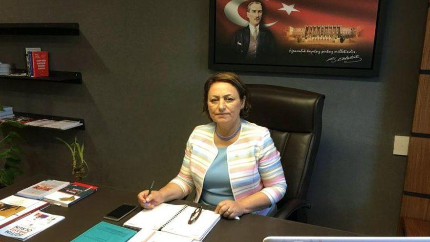 CHP'li Şevkin İçişleri Bakanı'na cinayetleri sordu
