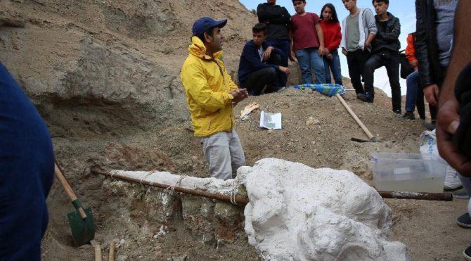 Kazı çalışmalarında bulunan hayvan fosilleri ilgi odağı oldu