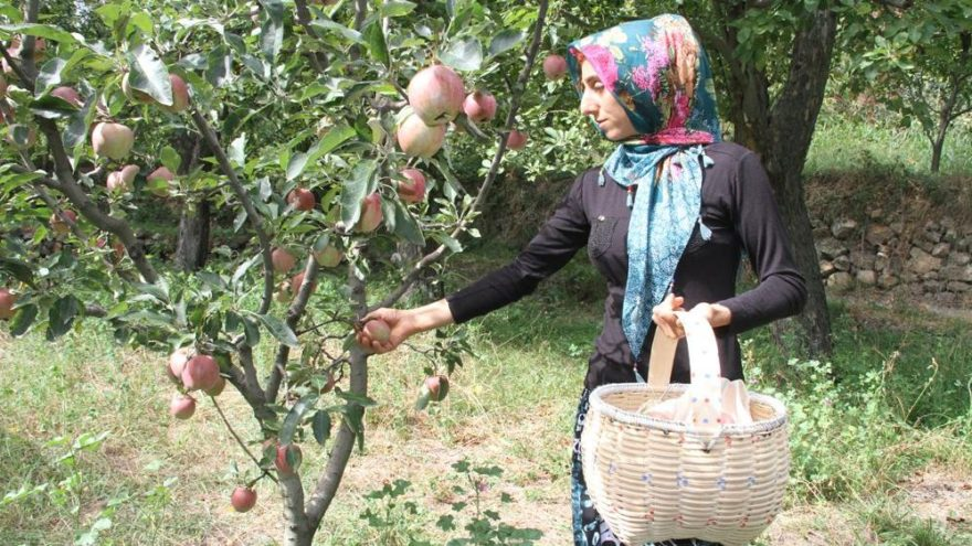 'Bahçe Okulları' projesi