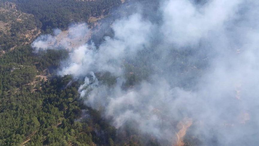 Denizli'de karaçam ormanında 6 farklı noktada yangın çıktı