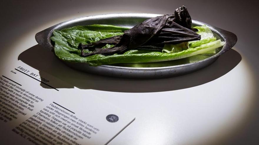 Sınırları zorlayan müze… Midesine güvenmeyen gitmesin