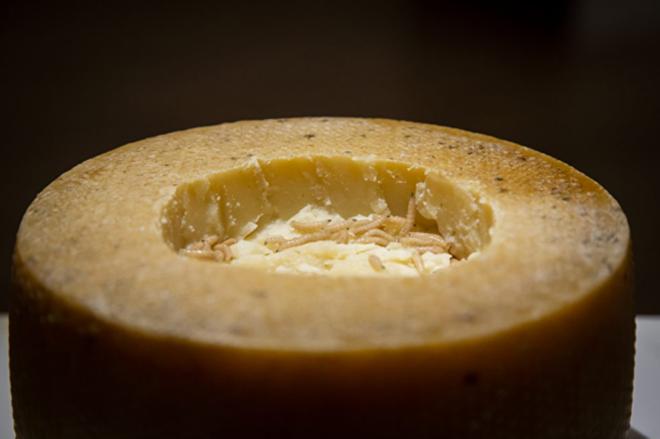 Kurtlu peynir.