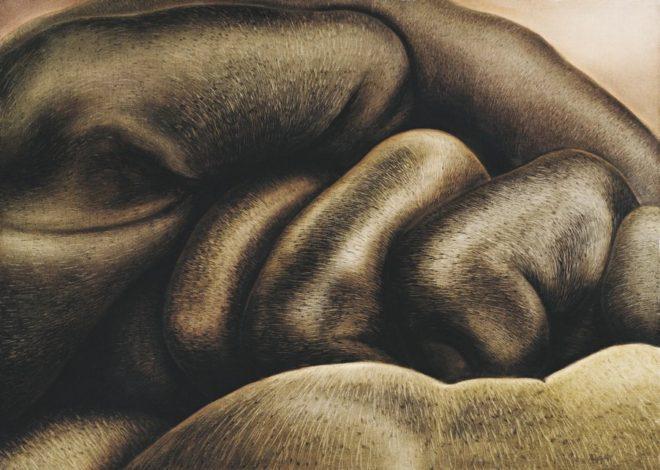 1983-125x90cm-oil-on-canvas