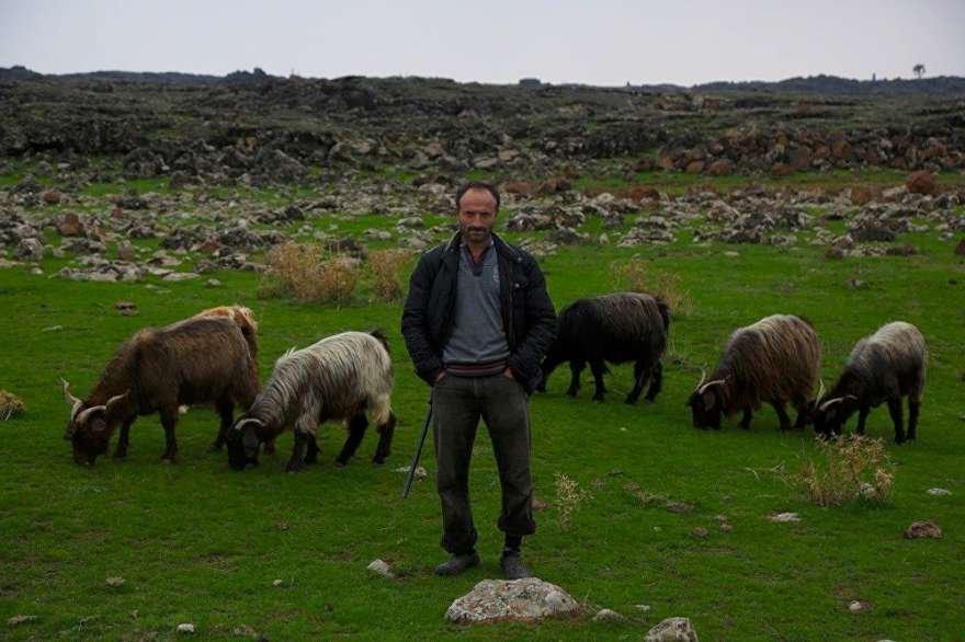 Köylülerin 'değişik biri' diye tanımladığı Arslan'ın tek çabası leyleklerin yuva yapması. Foto: Sputnik