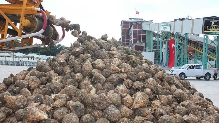 Şeker fabrikalarının arazileri haraç mezat satılıyor