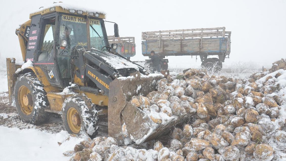 Fabrika özelleşti pancar kar altında kaldı