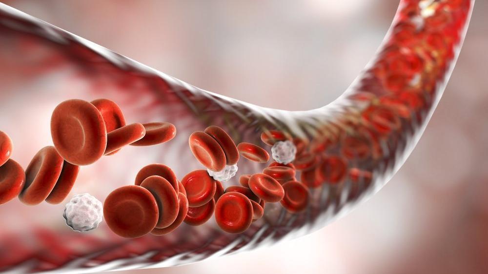 Nötrofil yüzdesi nedir? Nötrofil yüzdesi yüksekliği ve düşüklüğü ne anlama gelir?